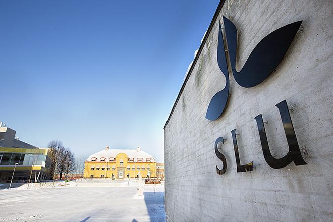 Sveriges lantbruksuniversitet, SLU