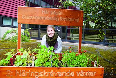 Ida Åberg, doktorand, Linköpings universitet